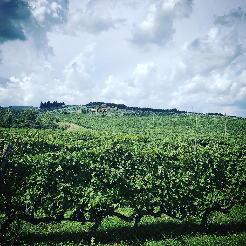 I 303 anni del primo territorio di vino.